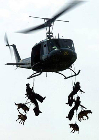 military working dogs helo drop