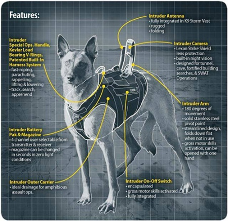 K9 body armor for police and military dogs by K9 Storm