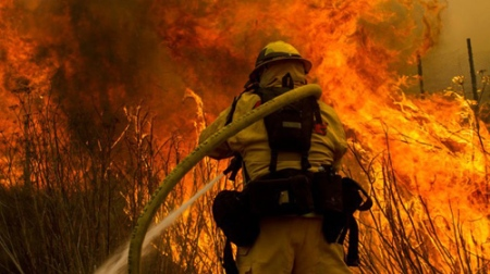 wildfire firefighter photo by AP