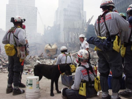 ground zero FL USAR fema