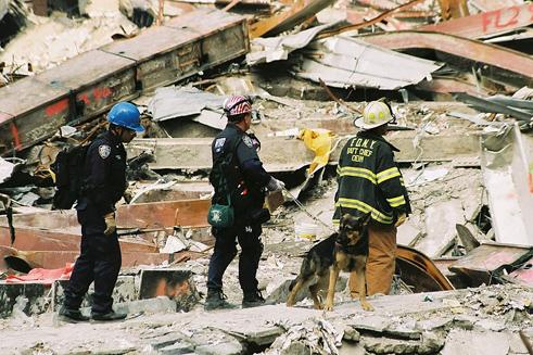ground zero sar fema