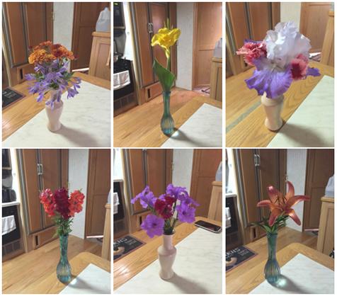 tx-flower collage