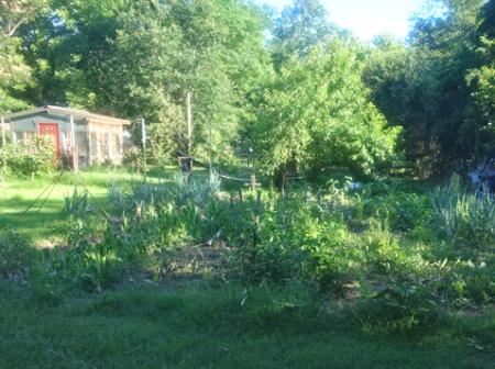 tx-garden n greenhouse